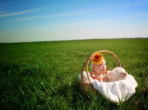 赤ちゃん草原