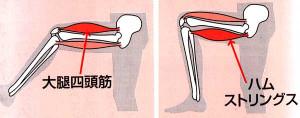 足筋肉18