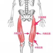 足筋肉10